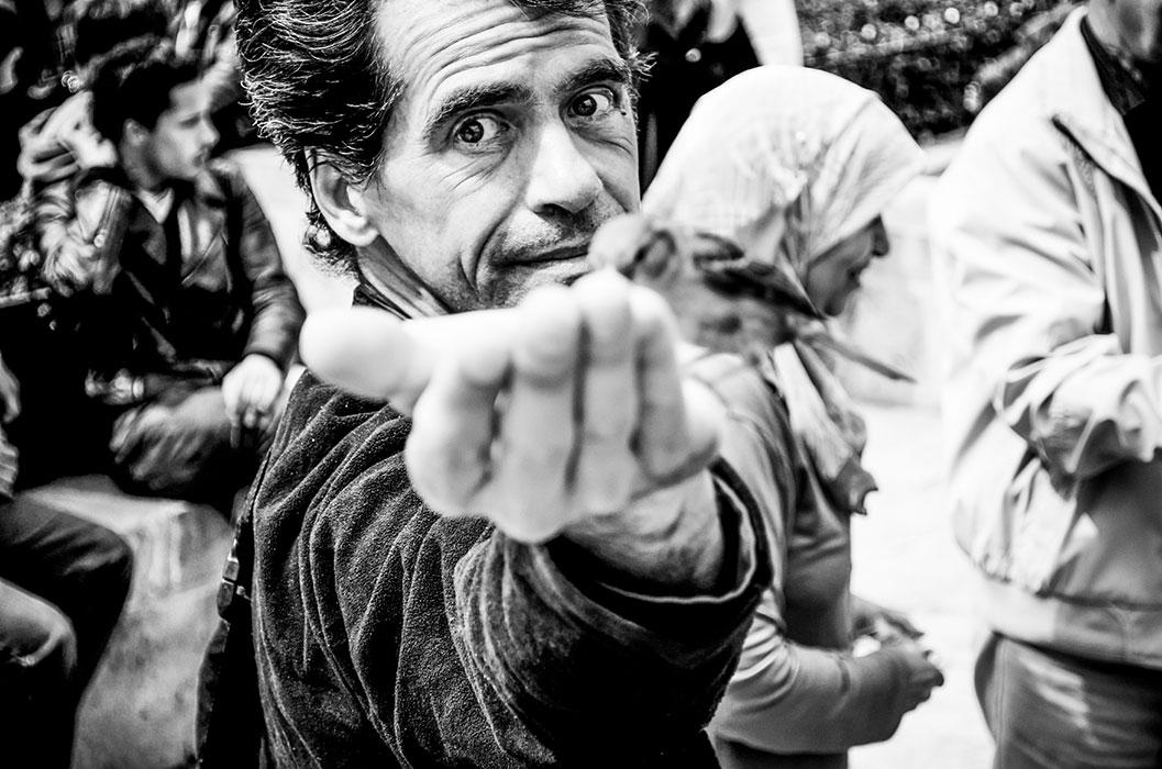 POP CRISTINA - Omul care iubea pasarile